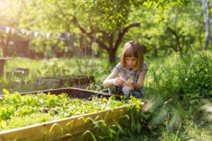 Cute little girl enjoy gardening in urban community garden